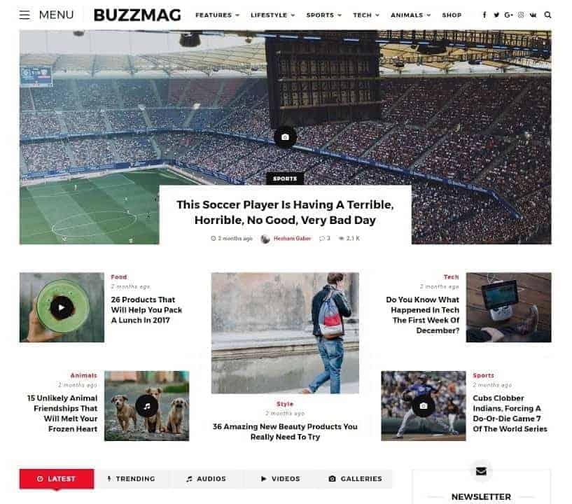 buzzmag wordpress theme